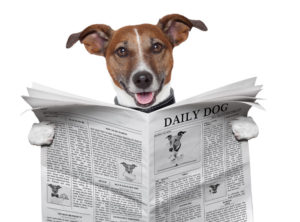 fotolia_46929832_subscription_monthly_xxl